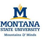 https://studyabroadconsultants.org/wp-content/uploads/2020/10/montana-state-university_5f8423ea5c156.jpeg