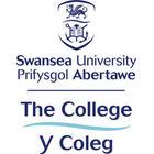 https://studyabroadconsultants.org/wp-content/uploads/2020/10/the-college-swansea-university-icws-navitas-uk_5f8431bf0e736.jpeg